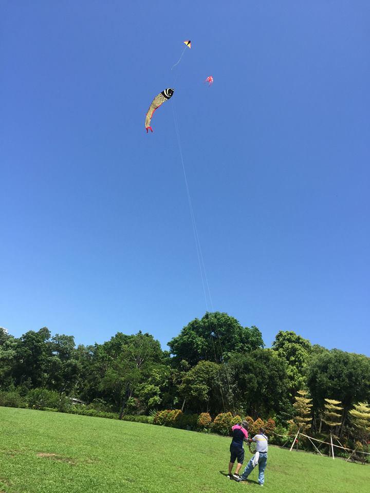 當風箏遇上風箏