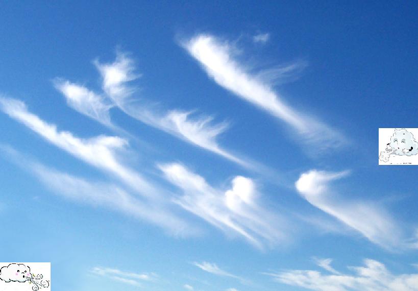 風的思想(1) —— 一個風象自由人的言詞