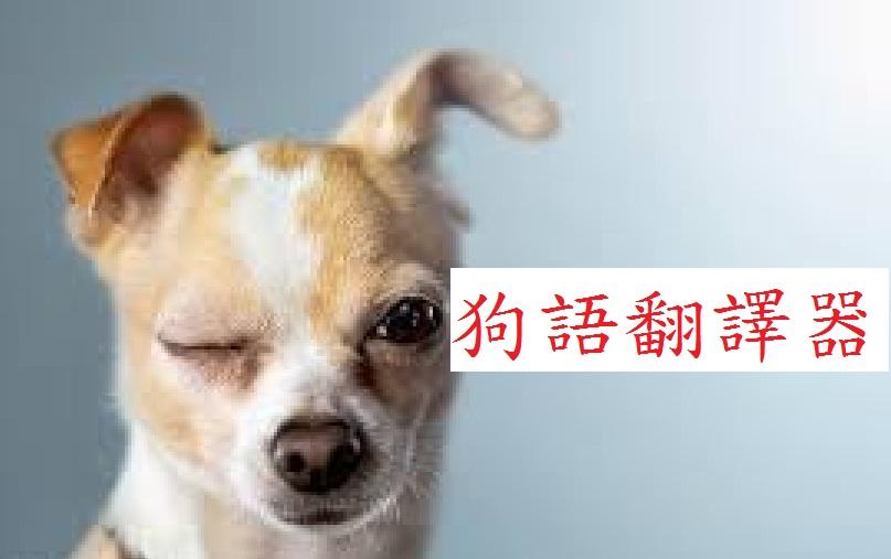 狗語翻譯器(上)